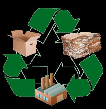 Цена на отходы бумаги и картона