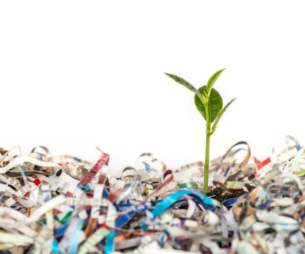 вывоз бумажных отходов